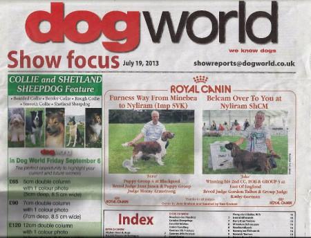 dog-world.jpg