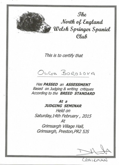 wss-certificate.jpg